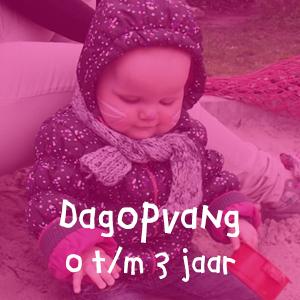 kinderdagopvang 0 t/m 3 jaar